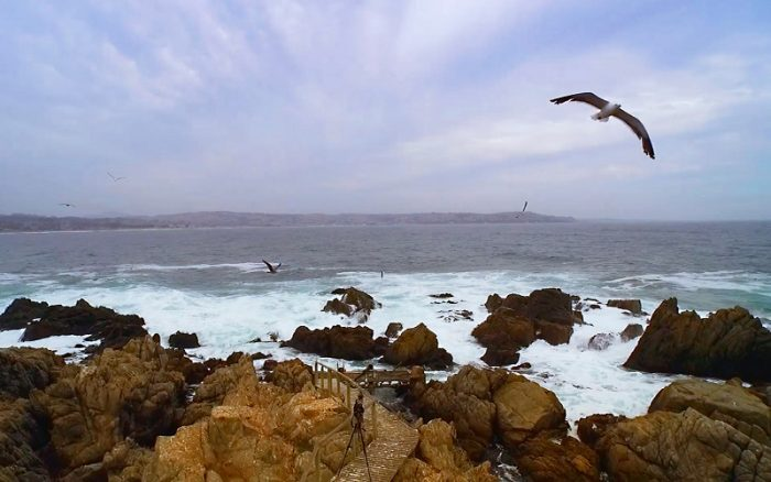 Cómo avanza la energía marina en Chile: centro de investigación busca reducir emisiones de carbono hacia 2030