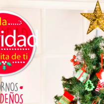 La campaña que busca terminar con los catálogos navideños
