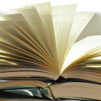 Literatura latinoamericana en Alemania: