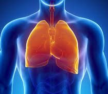 El tabaquismo: uno de los principales responsables de la Enfermedad Pulmonar Obstructiva Crónica
