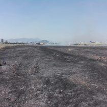 Incendio en Parque Bicentenario de Cerrillos provocó densa columna de humo
