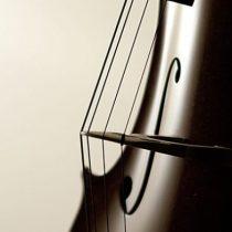 Escucha el sonido de una octava en un violonchelo