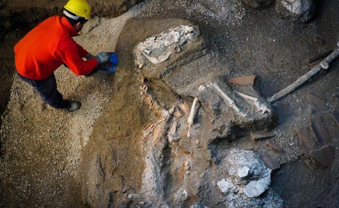 """Pompeya: el """"excepcional"""" hallazgo de los restos de un caballo con su silla y adornos"""