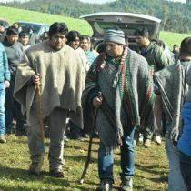 Diputados parlamentarán con dirigentes mapuches tras aceptar solicitud de diálogo