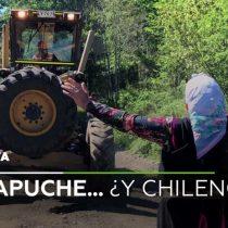 Así informan los medios extranjeros el conflicto entre la comunidad mapuche y el Gobierno