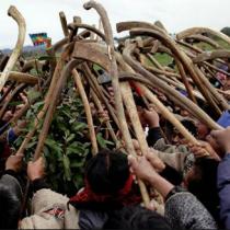 La raíz del conflicto del pueblo mapuche y el Estado de Chile