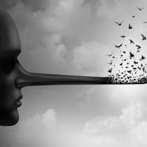 La democracia en riesgo, o cuando la mentira es un argumento