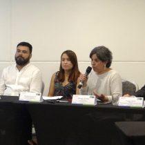 Expertos proponen potenciar las cooperativas de energía en América Latina para impulsar la democratización energética