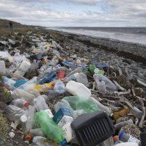 Plásticos, tema del año 2018