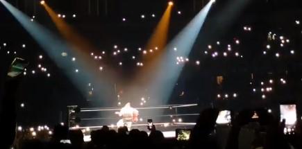 Luchador de la WWE interpretó
