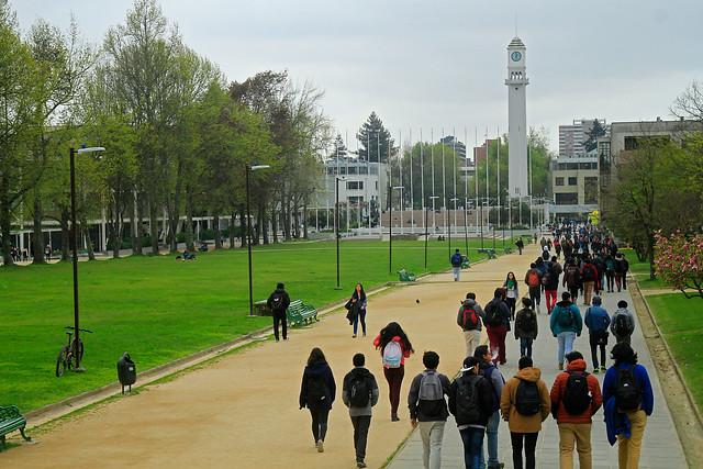 Universidad de Concepción inicia encuentros con egresados para formar Red Alumni
