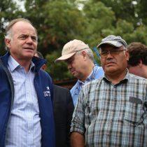 A tres semanas de las lluvias y granizos: Gobierno decreta zona de emergencia agrícola en 10 comunas afectadas