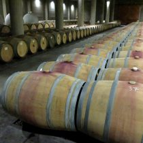 Vino chileno: primer semestre muestra importante recuperación de exportaciones y precios
