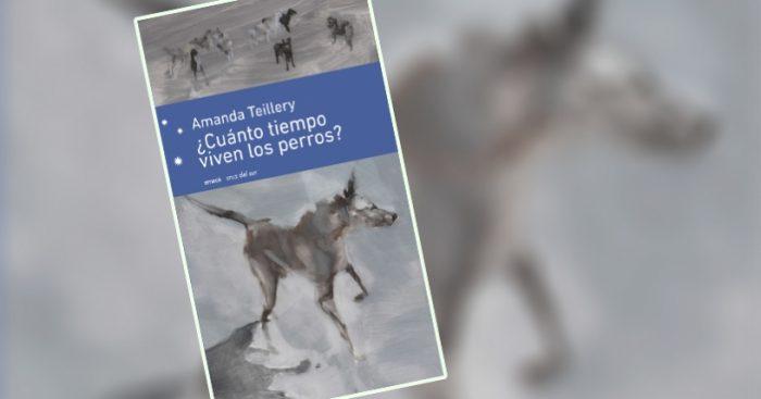 """Escritora Amanda Teillery autora de """"¿Cuánto tiempo viven los perros?"""": """"los cuentos tienen en común el presentar un proceso de perdida de la inocencia"""""""