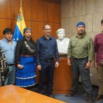 Canciller venezolano tras reunión con Héctor Llaitul:
