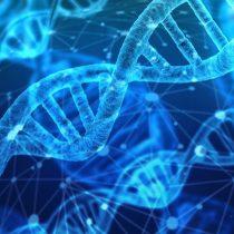 China exige a sus universidades que denuncien experimentos genéticos ilegales