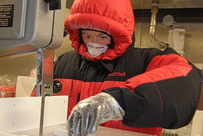 Chilena experta en microorganismos y hielo se adjudica el Fellowship Awards 2018