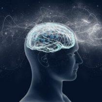 """WAND: cómo funciona el """"marcapasos cerebral"""" que promete detener los temblores y convulsiones del párkinson y la epilepsia"""