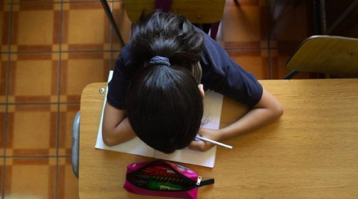 Educación con excelencia: a propósito de