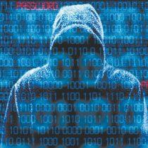 Expertos informan que fraudes de ID online subieron un 37% desde que comenzó pandemia