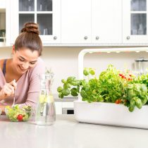 Mitos y verdades de la alimentación saludable