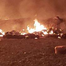 """Chile """"lamenta la tragedia"""" que causó 66 muertos en México por una explosión"""