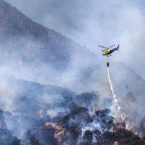 Nuevo reporte de la Onemi indica que hay 8 incendios forestales activos, 14 controlados y tres alertas rojas