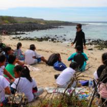 Año sabático de voluntariado en proyectos marinos en Galápagos
