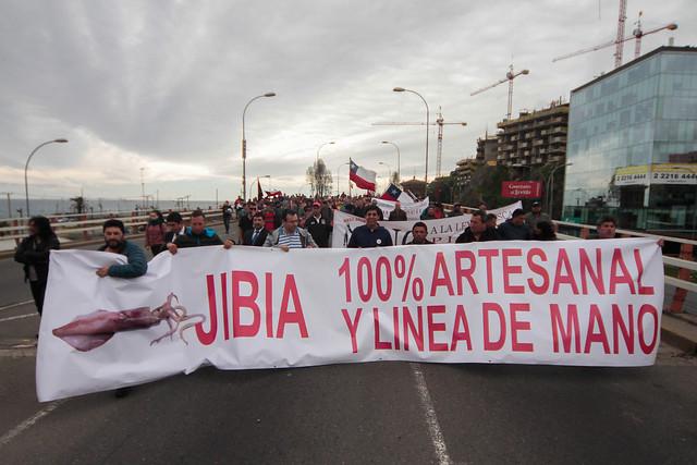 """Sigue la """"Guerra de la Jibia"""": veto presidencial apaga el fuego con bencina y pescadores radicalizan protestas"""