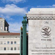 OMC: entre el verano y el invierno boreal