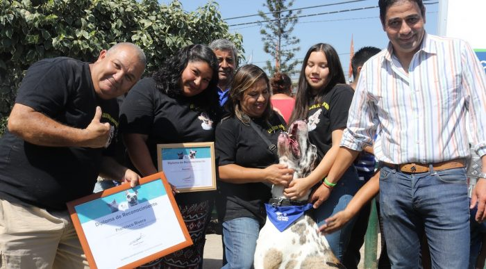 Perro más grande de Chile fue nombrado Embajador de la Tenencia Responsable de La Granja