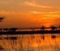 Los conflictos violentos por recursos (como el agua) que ya está creando el cambio climático