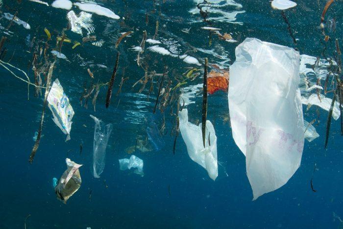 WWF hace llamado global para un acuerdo vinculante que frene la contaminación plástica en el mar