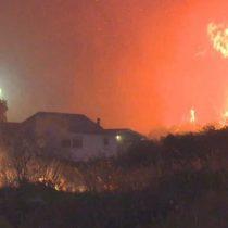 Onemi realiza nuevo balance de los incendios forestales: 15 siniestros se han registrado a nivel nacional