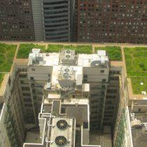 La iniciativa del Minvu para fomentar los techos verdes