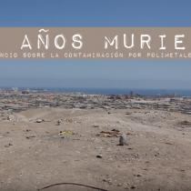 La muerte silenciosa del Sitio F en Arica