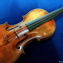 """¿Está el cambio climático amenazando el famoso """"bosque de los violines"""" de Italia?"""