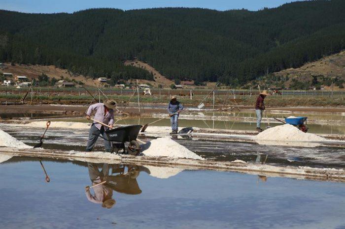 Turistas pueden aprender en Chile un oficio que tiene 500 años: