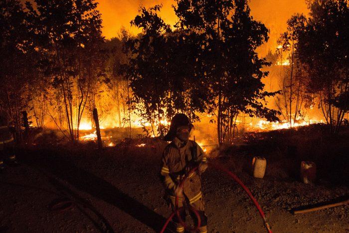 Incendios forestales: decretan toque de queda en provincia de Concepción tras sospechosos focos simultáneos