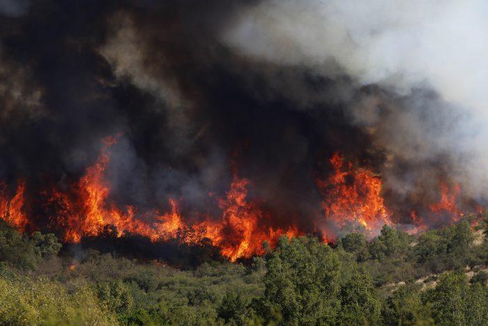 """Pirómanos o """"violencia rural"""": las tesis del intendente Atton sobre los incendios en La Araucanía"""