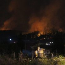 Incendios forestales atacan ahora la Región de Ñuble: Chillán y Coelemu bajo Alerta Roja