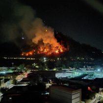 [Actualizada] Incendio en Cerro San Cristóbal obliga a evacuación preventiva de animales en el Zoológico
