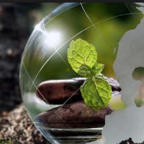 Defensores ambientales, Estado de Derecho y Acuerdo de Escazú