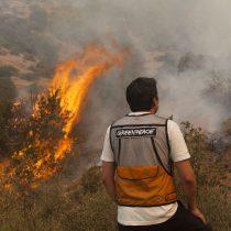 """Greenpeace: """"El cambio climático actuará como nuevo combustible para la propagación de incendios en la Patagonia"""""""