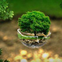 La urgencia de mejorar la actual legislación medioambiental
