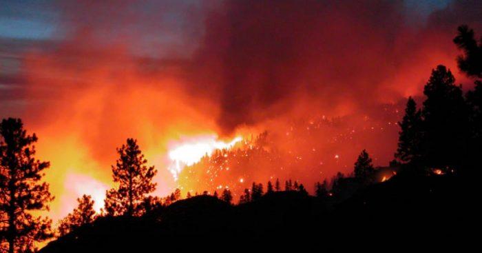 Científicos advierten sobre los desafíos ambientales para prevenir y controlar los incendios forestales