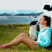 De paseo con las mascotas: desde seguros de viaje a requisitos sanitarios de cada país