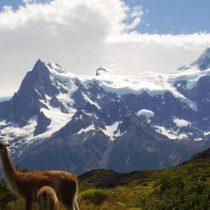 Dos turistas israelíes mueren en accidente de bote en Torres del Paine