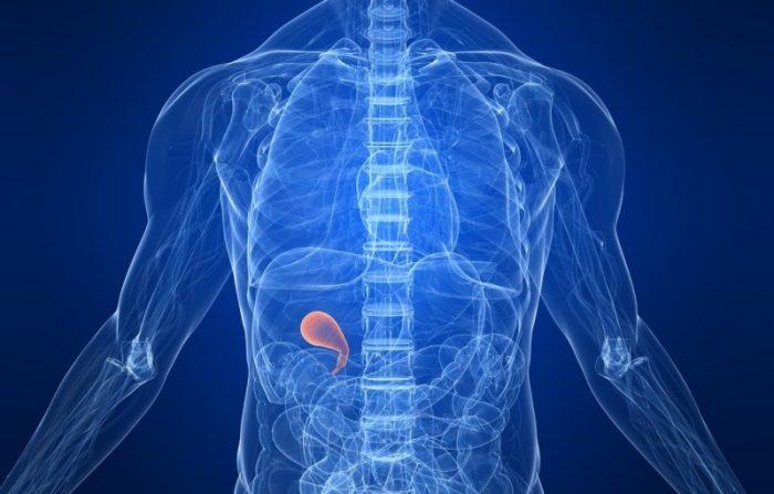 Estudian genes de riesgo que provocan cálculos en la vesícula y pueden derivar en cáncer