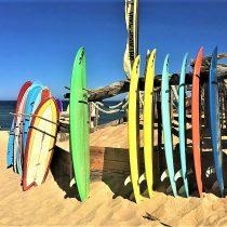 ExpoSurf 2019: la feria de surf más grande de Chile